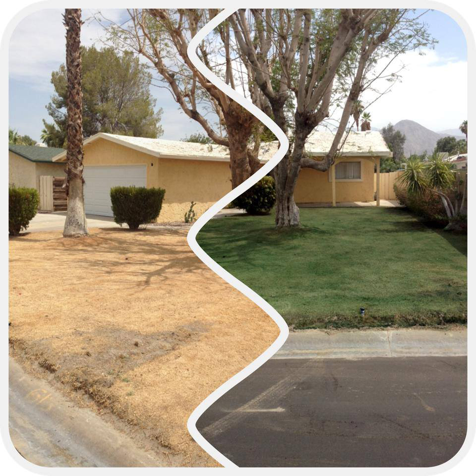 Drought conditions and a foreclosure spike in California leads to a lot of brown grass. But property owners, realtors and sellers don't have to settle for anything less than a green, luxurious lawn with Endurant turf paint. Contact Foster-Gardner today if you're in California.