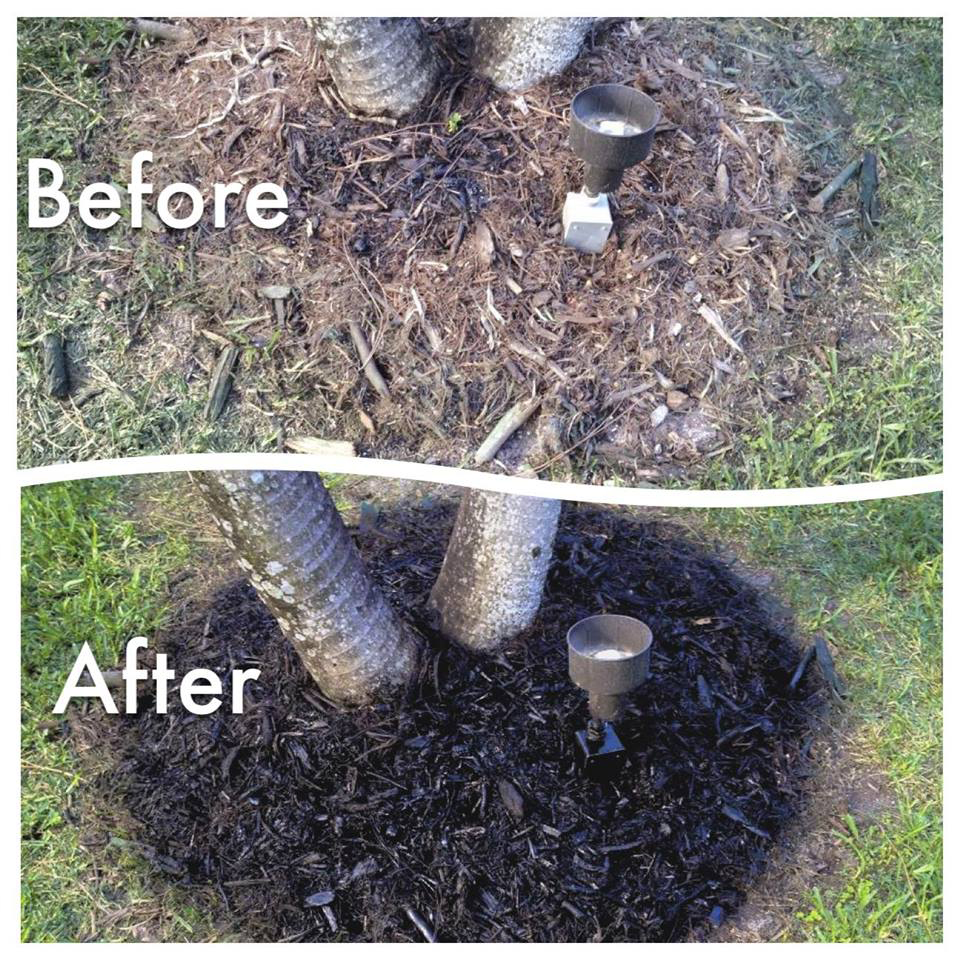 Before and After of Endurant turf paint on mulch
