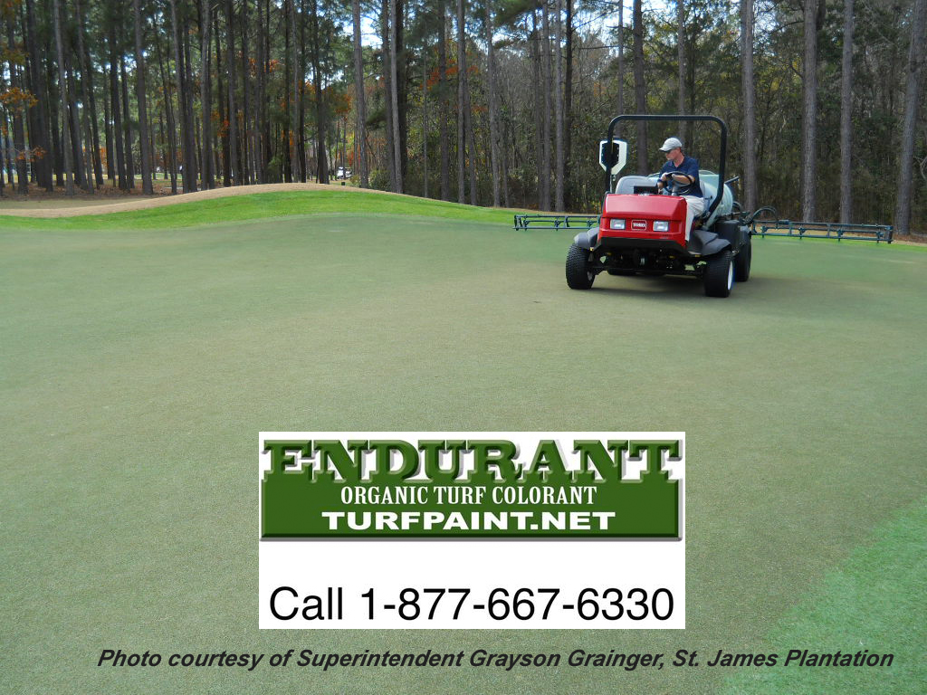 Endurant turf paint beats the competitors' brands of turf paint and saves huge compared to overseed