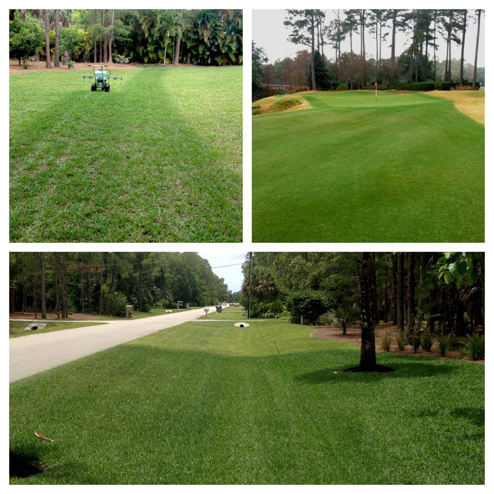 "Endurant applications create instant ""wows!"" at prices that beat the competition while being environmentally-friendly. So easy to apply. www.turfpaint.net"