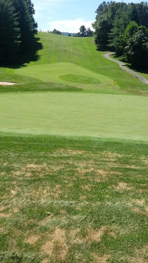 Agriox (Agriox.com) helps Reems Creek Golf Course thrive through water shortages.
