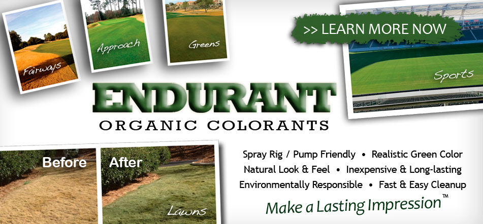 Turf Paint liquid overseed