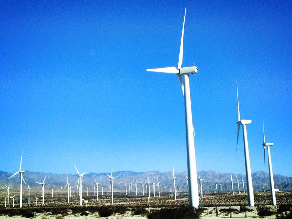 Wind Farm, Palm Springs