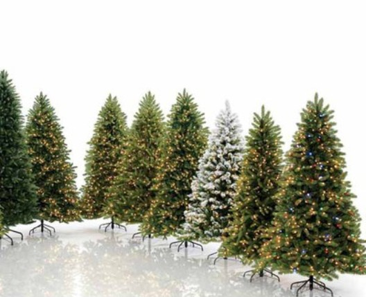 How To Choose A Christmas Tree: Cut, Live Or Artificial