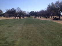 Turf Painting Field Day in Dallas, Texas with Endurant Turf Colorant.