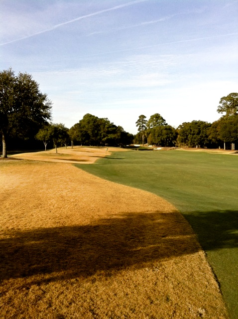Painting warm season grasses with organic Endurant turf colorant provides a solution to the dead-looking brown grass that is a natural dormancy stage of warm season grasses during the winter months.