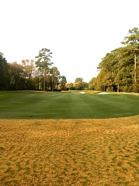 Endurant Turf Colorant: The USGA recommends turf colorant versus overseed. West Coast Turf now supplies Endurant in California