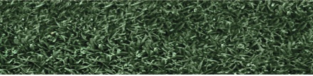 Endurant FW, the turf colorant for deep green, eye-catching fairways