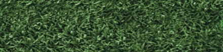 Endurant TC: The Original Turf Colorant from Geoponics that was the first in the line. Endurant Turf Colorants offer variety