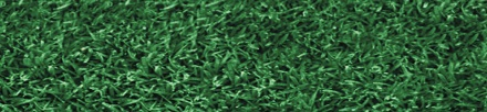 Endurant Perennial Rye turf colorant for the look of Augusta. A colorant that looks like Augusta because Endurant Turf Colorants offer variety to turf pros