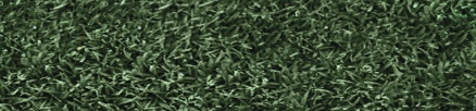 Endurant Premium: An ultra-concentration of the original turf colorant adding more options to professional turf managers as Endurant Turf Colorants offer variety for many uses and shades of green