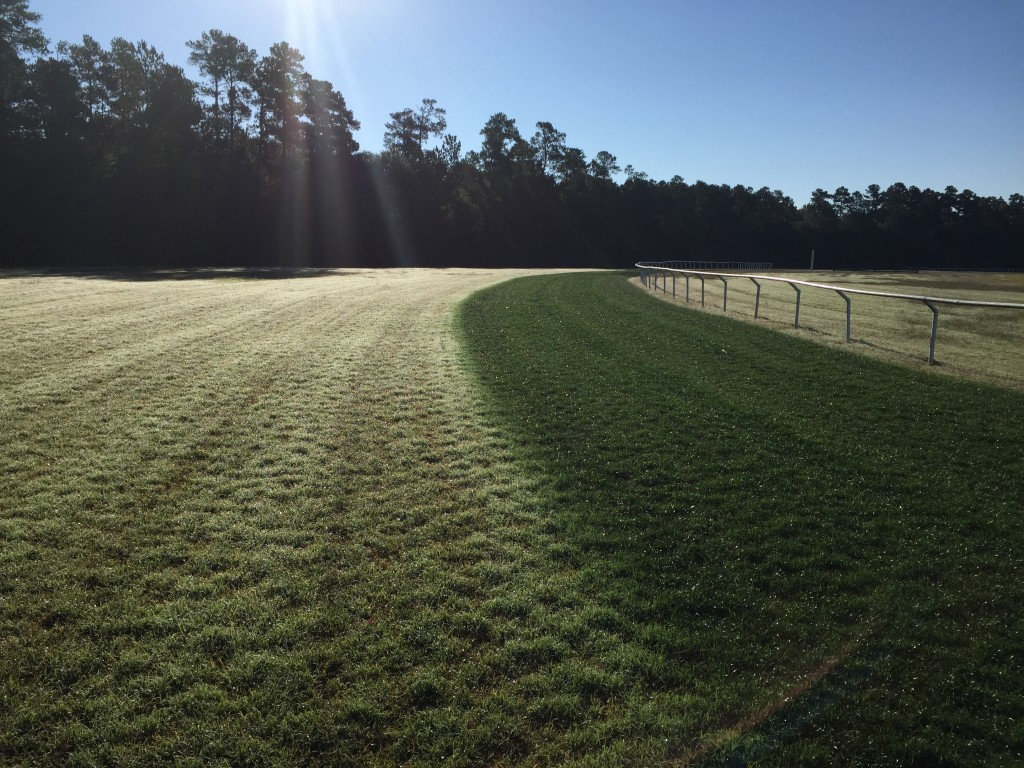 Endurant turf paint offering the best organic turf colorants and beating out overseed on golf courses and now this famous horse racing course