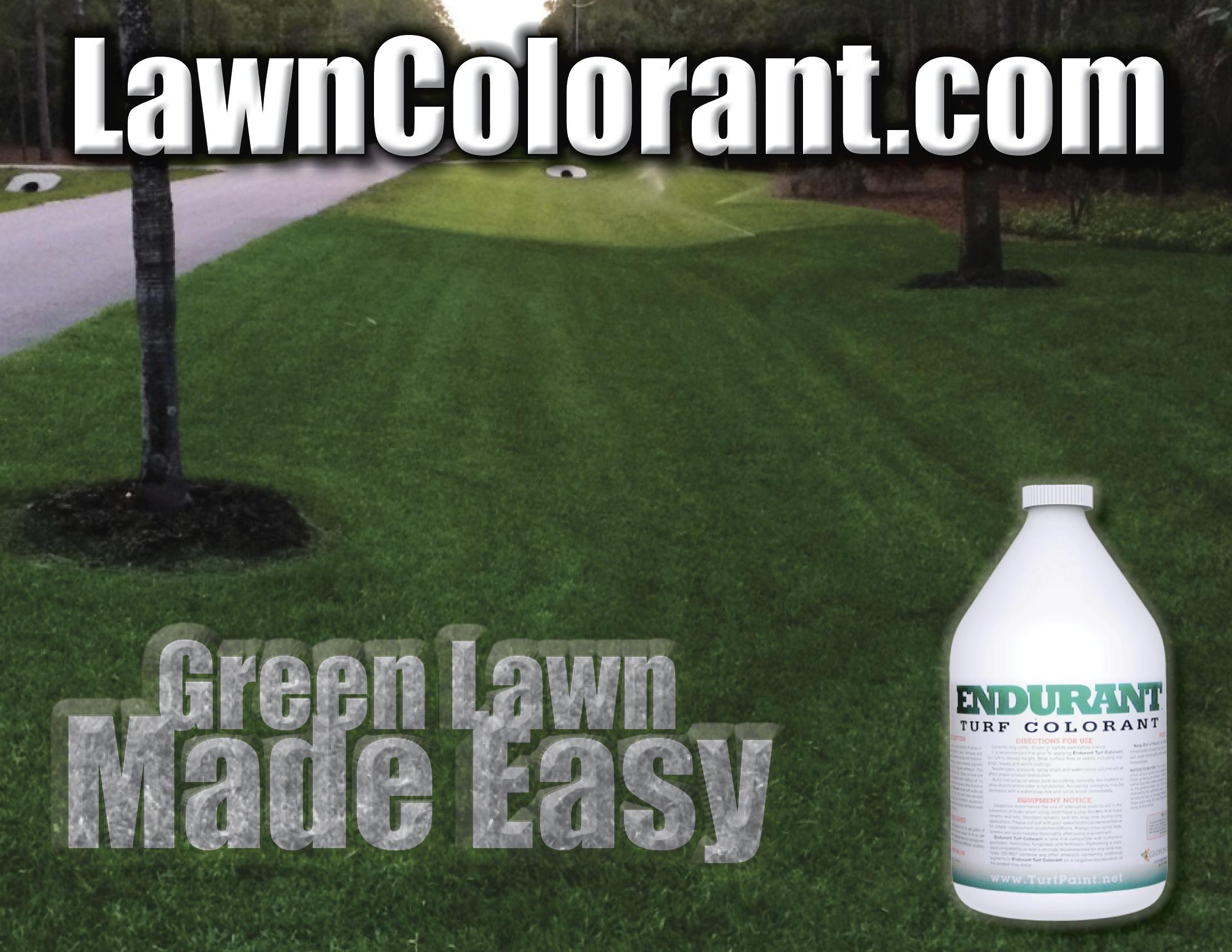 Grass Dye Endurant organic grass paint boosts home sales