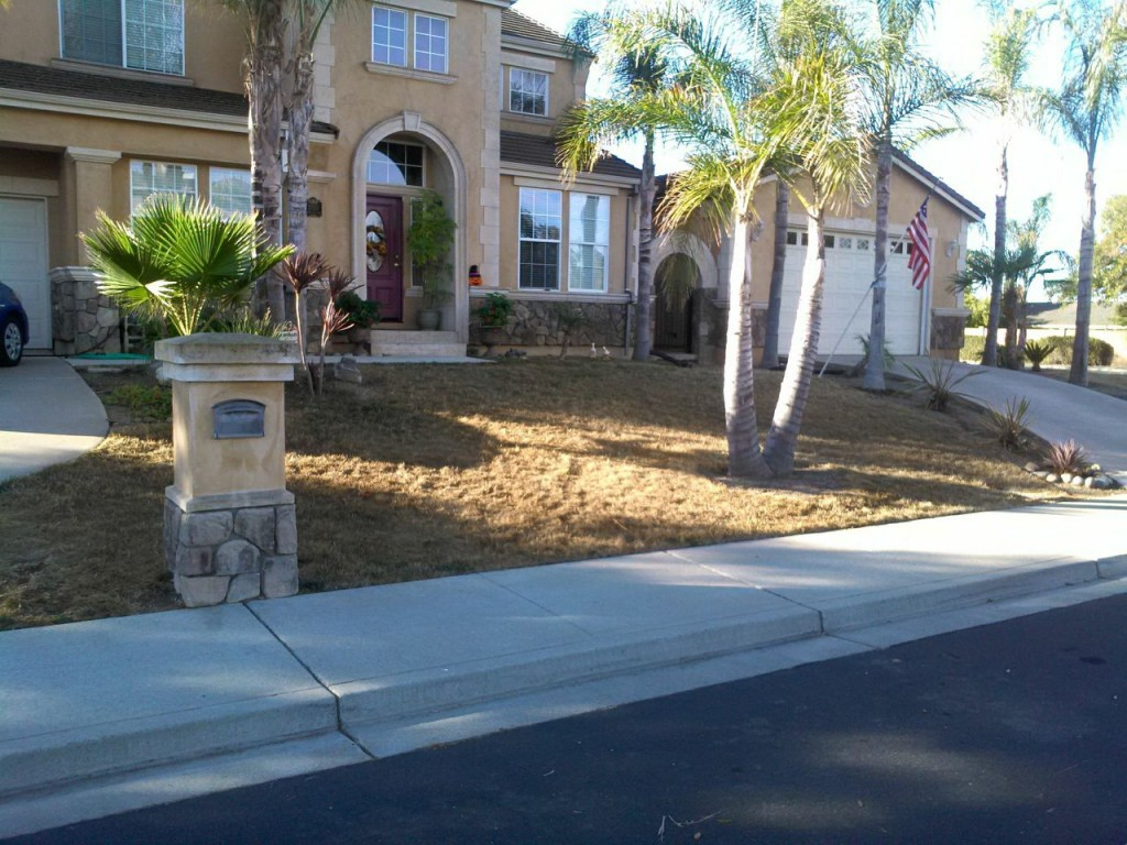 California Drought Lawn Picasso Endurant organic colorants ProEdge emissions free sprayer