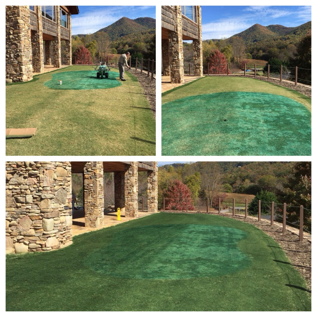 Blue turf repaired with Endurant TC