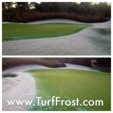Turf frost delays prevented with Penterra