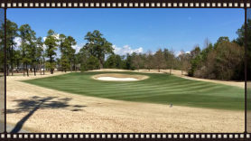 March provides boost in sod sales as nation's top sod growers get faster greenup with Endurant.