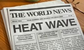 heatwave strikes U.S. states: soil surfactants, Agriox keep grass alive