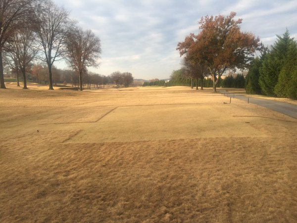 Before and after pics: Endurant provides golf courses with the look of overseed more quickly, at lower cost and without the harmful environmental effects of over-watering and over-fertilizing.