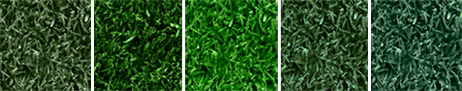How to paint turf: Select a shade of Endurant turf colorant