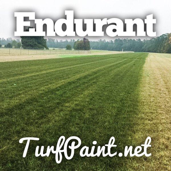 Turf professionals choose Endurant