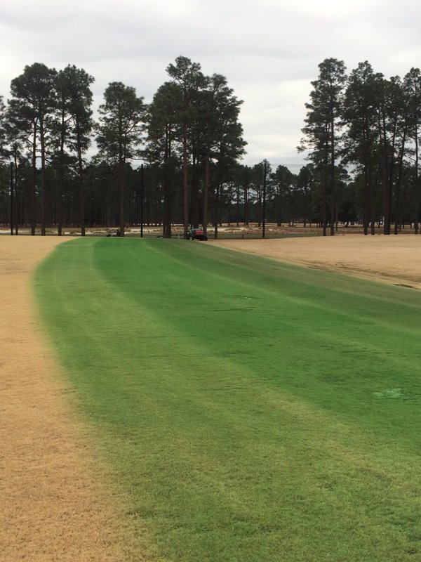 Demo at Pinehurst shows off Endurant TC on the golf course
