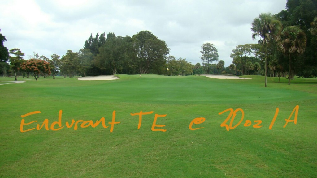 Endurant TE turf enhancer colorant